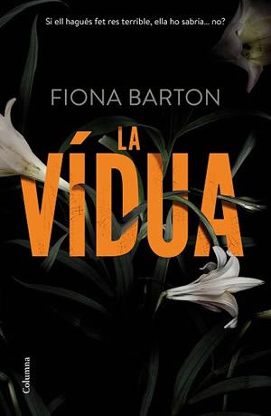 La vídua – Fiona Barton